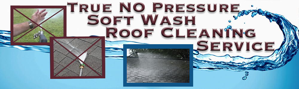 Roof Cleaning Services Ocala Roof Cleaning Amp Pressure